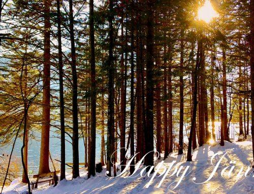 Jänner – Jahresbeginn, Fasching und Neuausrichtung